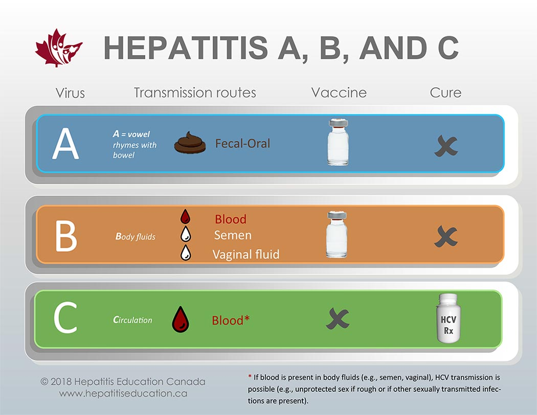 Difference Between Hepatitis and Jaundice (with Comparison ...